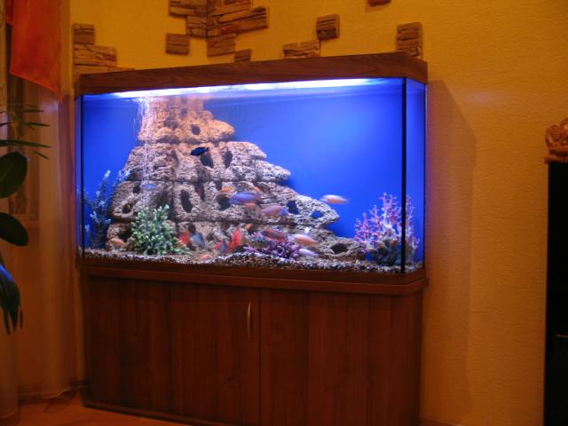 Как своими руками сделать светодиодную подсветку аквариума